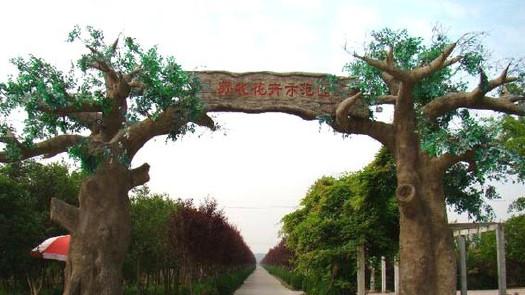 沭阳县苏北花卉示范园